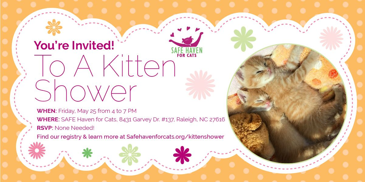 Kitten Shower Invite Event 2018-05-25