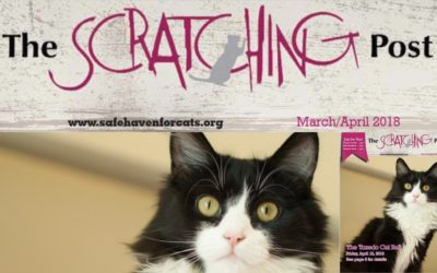 The Scratching Post: March / April 2018