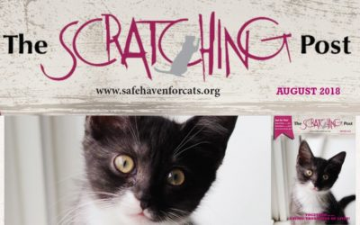 The Scratching Post: August 2018