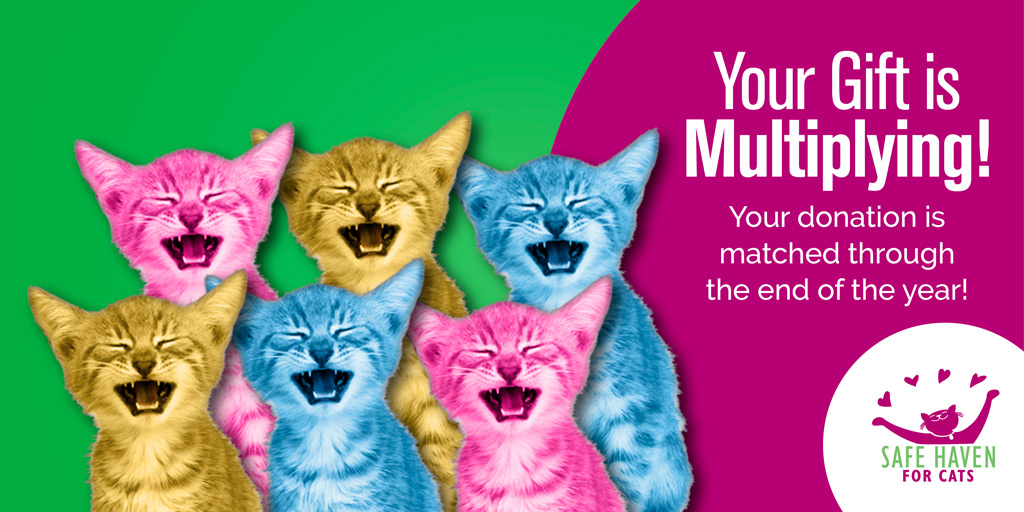 Matching Gift Image - Your gift is multiplying. Your donation is matched through the end of the year.