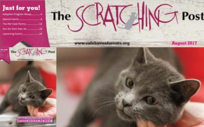 The Scratching Post: August 2017