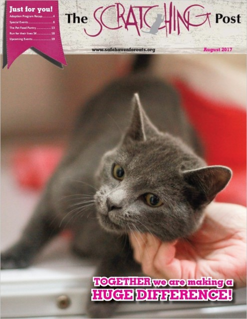 Safe Haven for Cats Scratching Post 2017-08 Cover