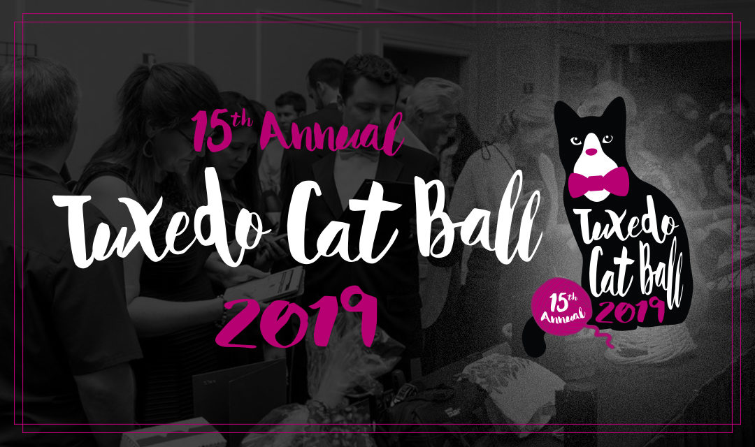 Dine, Dance, Do Good at the Tuxedo Cat Ball