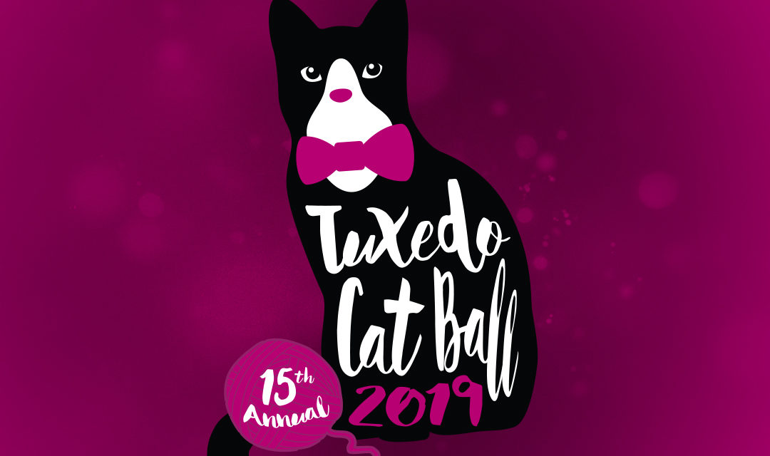 Sneak a Peek at the Latest Tuxedo Cat Ball Items