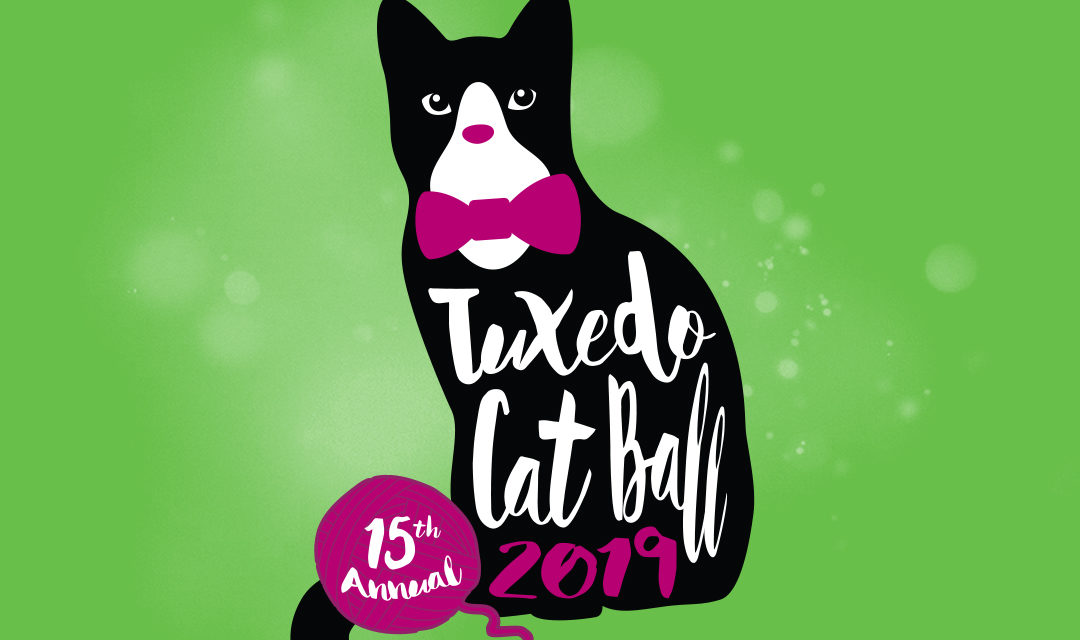 Tuxedo Cat Ball Logo on Green Background - Tuxedo Cat with Pink Bowtie