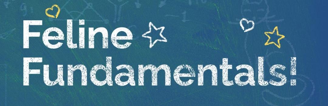 Banner for Feline Fundamentals
