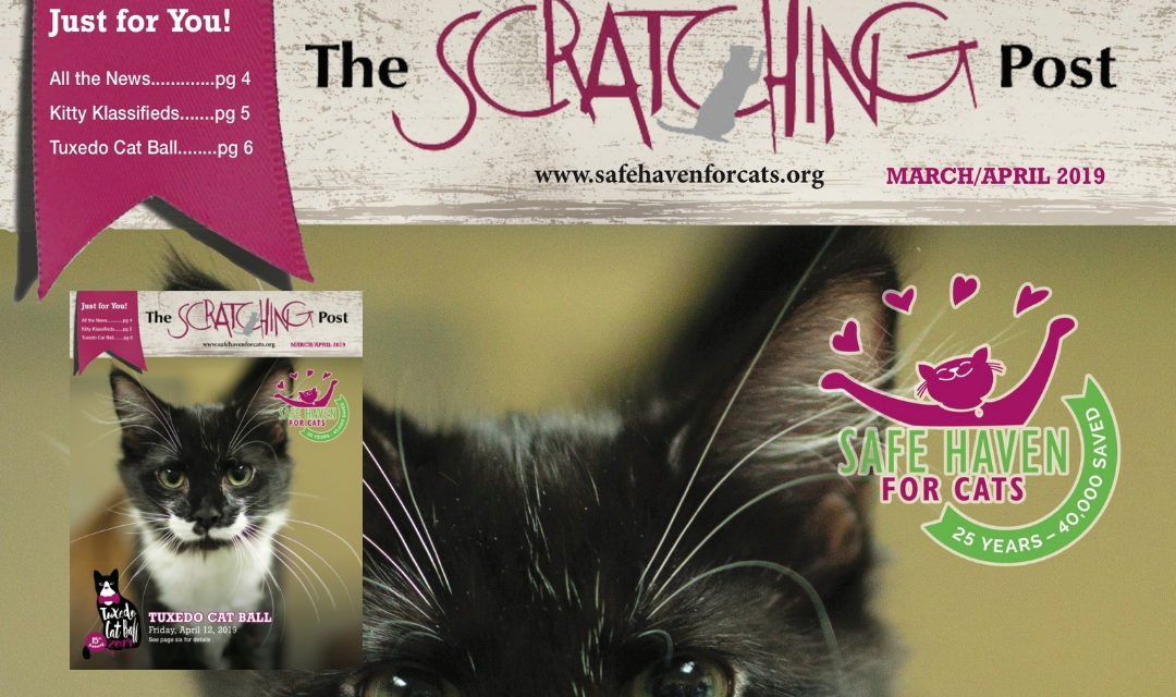The Scratching Post: March/April 2019