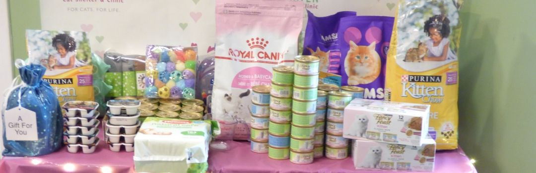 Picture of Supplies Donated During the 2019 Kitten Shower Including Cat Food and Toys