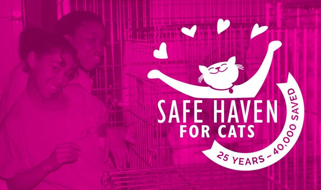 Pink Banner With 25th Anniversary Logo And Two Girls Cleaning Cages In The Background