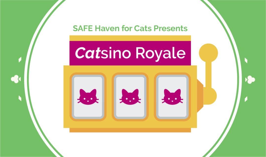 Catsino Royale - Event Banner - 1080x640