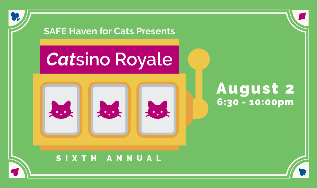 Roll the Dice & Get Lucky at Catsino Royale!
