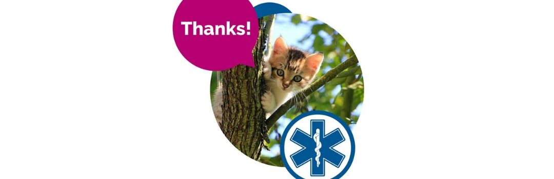 Cat Stuck in Tree Saying Thanks
