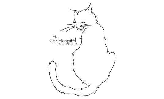 2019 Cat Fest 5k Cat's Meow Sponsor The Cat Hospital of Durham and Chapel Hill