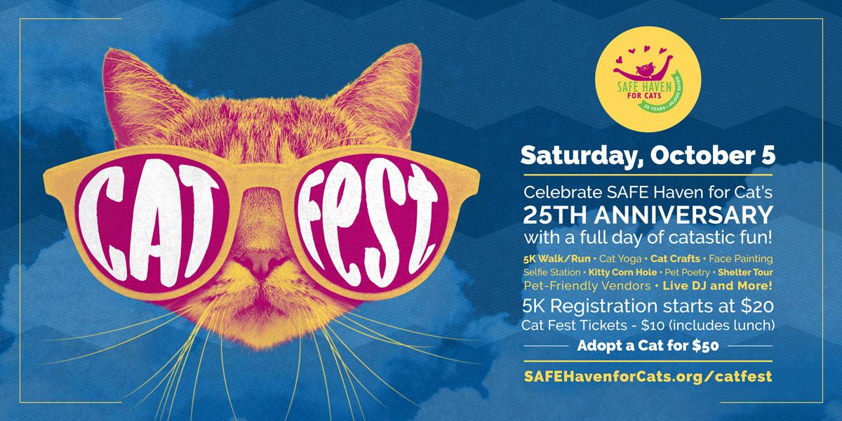 Cat Fest Social