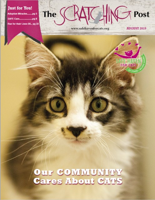 SAFE Haven for Cats Scratching Post August 2019