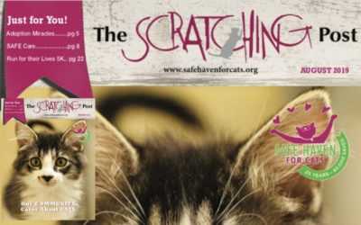 The Scratching Post: August 2019