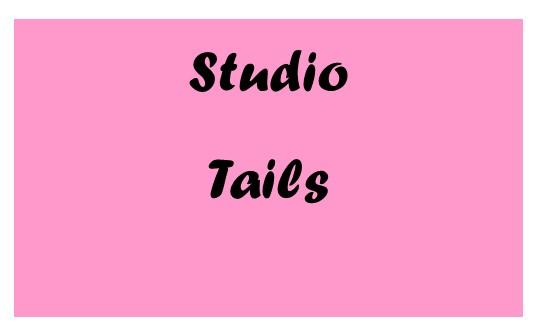 2019 Cat Fest 5k Vendor Studio Tails