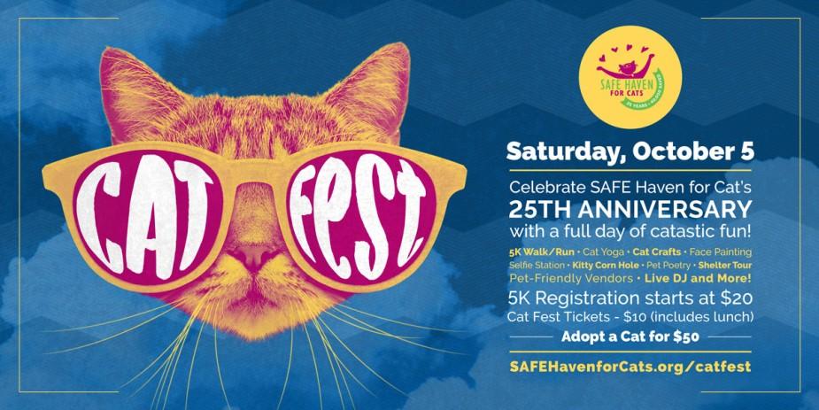 Cat Fest Social blue