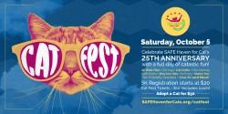 Cat Fest Social blue icon