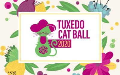 Tuxedo Cat Ball – POSTPONED