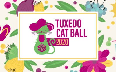 Join the Tuxedo Cat Ball from Home!