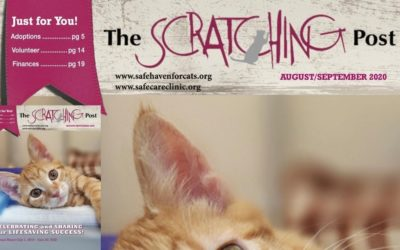 The Scratching Post: September 2020