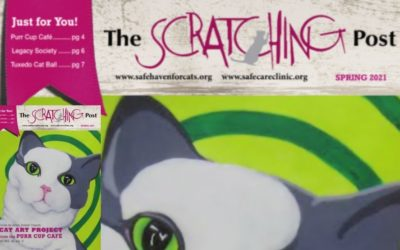 The Scratching Post: March 2021