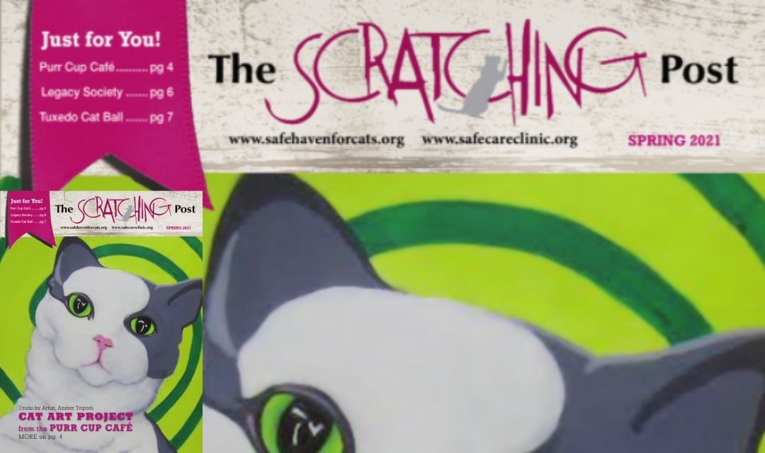 Scratching Post Cover for March 2021