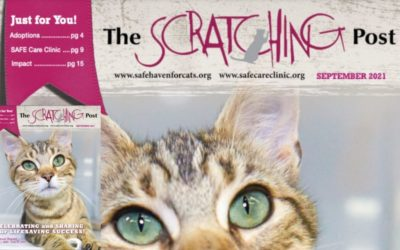 The Scratching Post: September 2021